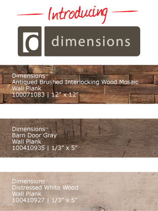Introducing Dimensions