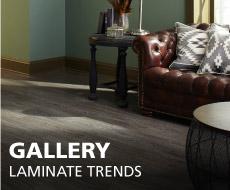 Lamiante Gallery